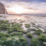 Bilder aus Etretat - Der wohl bekannteste Teil der französischen Kreideküste 10