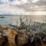 Bilder vom Atlantik - Mimizan bis Biarritz 10