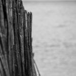 Bilder vom Atlantik - Mimizan bis Biarritz 8