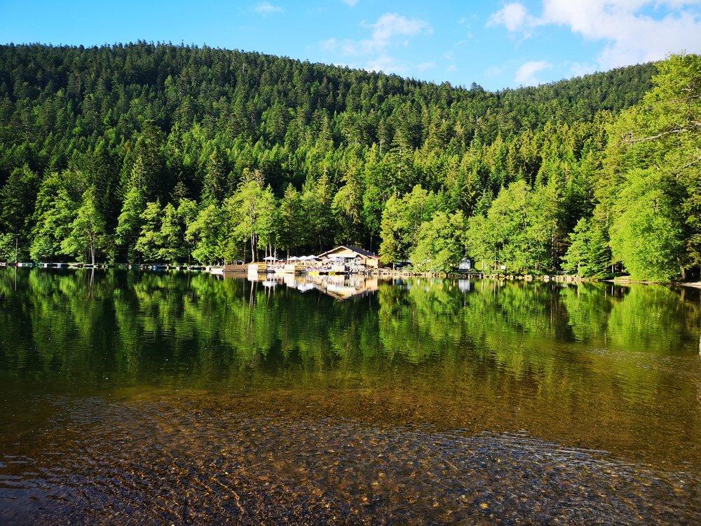 Camping in den Vogesen 6