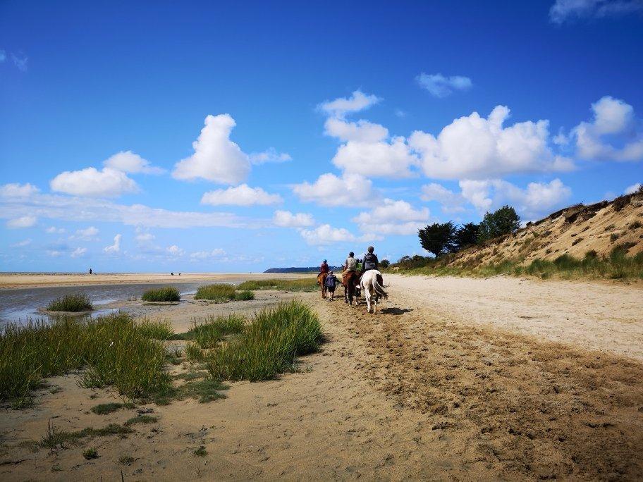 Reisetipp Normandie - die Bucht des Mont Saint Michel 6