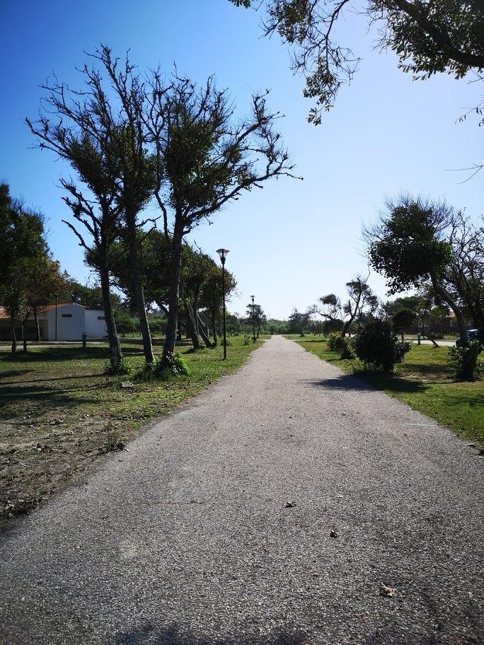 Campingplatzbericht und Umgebung von Praia de Mira - Portugals Westküste 10