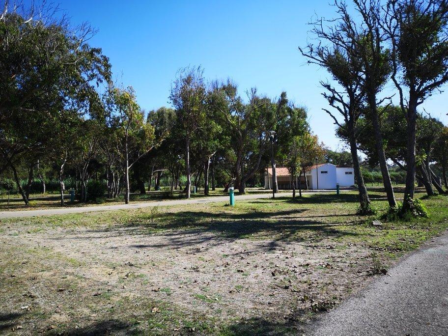 Campingplatzbericht und Umgebung von Praia de Mira - Portugals Westküste 12