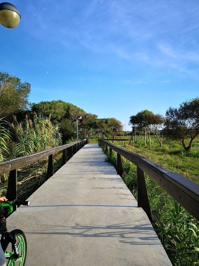 Campingplatzbericht und Umgebung von Praia de Mira - Portugals Westküste 6